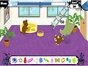 Click to Play Pet Academy