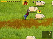 Click to Play Pig Trouble