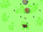 Click to Play Butterfly Frenzy