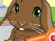 Click to Play Pet Bunny